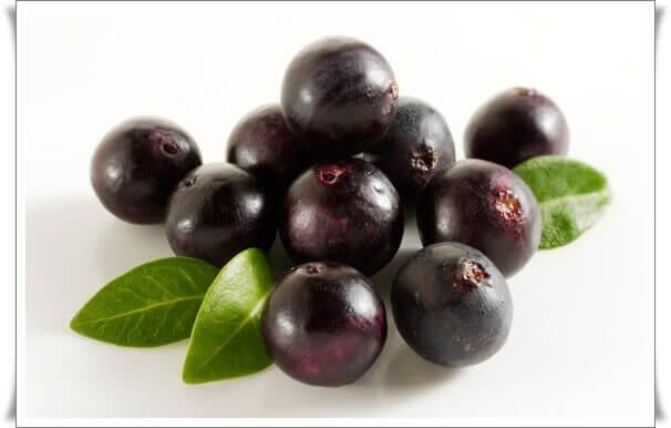 acai-berry-ile-zayiflama