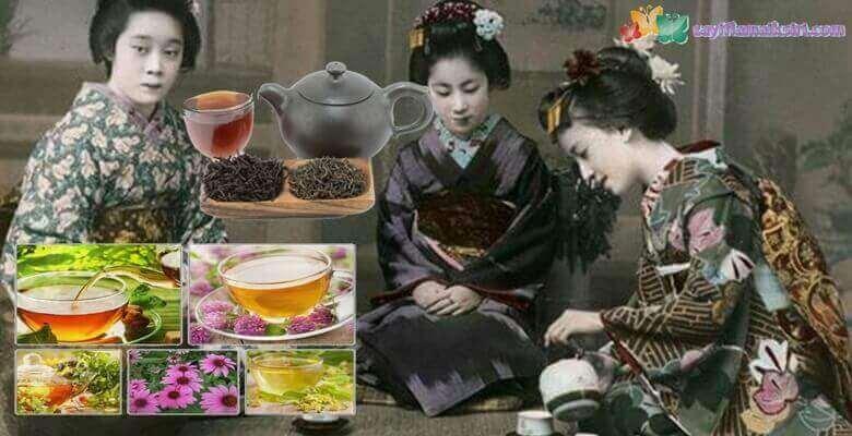 Zayıflatan Japon Matcha Çayı Nedir? Nasıl Kullanılır? Kaç Kilo Verdirir?